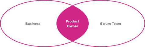 A Venn diagram showing that the Product Owner is at the intersection of the Business and the Scrum Team.